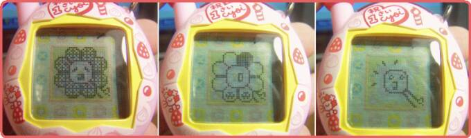 cyoigame3.jpg